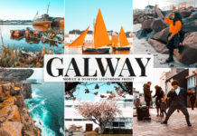 Free Galway Lightroom Preset