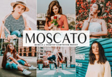 Free Moscato Lightroom Preset