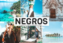 Free Negros Lightroom Preset