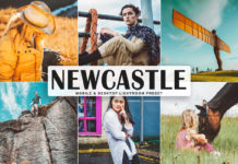 Free Newcastle Lightroom Preset