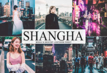 Free Shanghai Lightroom Preset