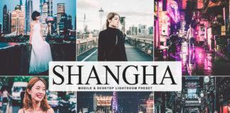 Free Shanghai Lightroom Preset