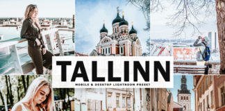 Free Tallinn Lightroom Preset