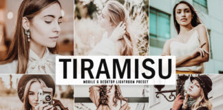 Free Tiramisu Lightroom Preset
