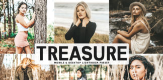 Free Treasure Lightroom Preset