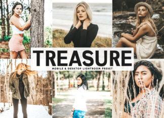 Free Treasure Lightroom Preset