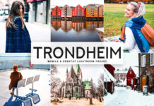 Free Trondheim Lightroom Preset
