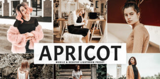 Free Apricot Lightroom Preset