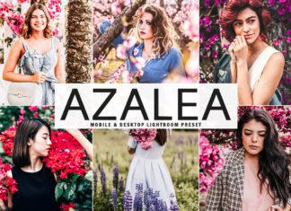 Free Azalea Lightroom Preset