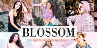 Free Blossom Lightroom Preset