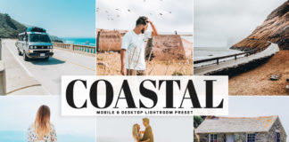 Free Coastal Lightroom Preset