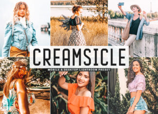 Free Creamsicle Lightroom Preset