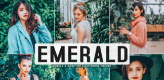 Free Emerald Lightroom Preset