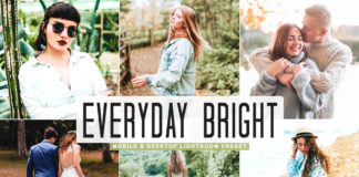 Free Everyday Bright Pro Lightroom Preset