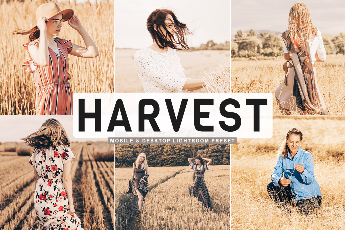 Free Harvest Lightroom Preset