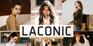 Free Laconic Lightroom Preset