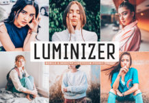 Free Luminizer Lightroom Preset