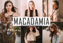 Free Macadamia Lightroom Preset
