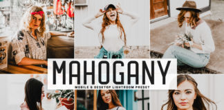 Free Mahogany Lightroom Preset