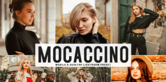 Free Mocaccino Lightroom Preset