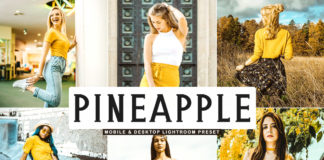 Free Pineapple Lightroom Preset