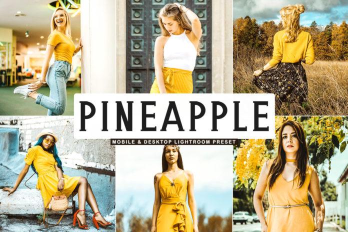 Free Pineapple Lightroom Preset
