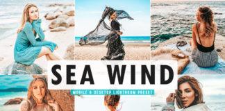 Free Sea Wind Lightroom Preset
