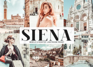 Free Siena Lightroom Preset