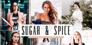 Free Sugar & Spice Lightroom Preset