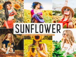 Free Sunflower Lightroom Preset