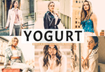 Free Yogurt Lightroom Preset