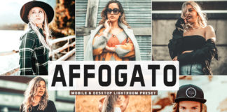 Free Affogato Lightroom Preset