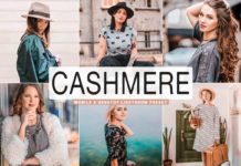 Free Cashmere Lightroom Preset