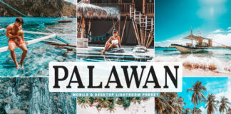 Free Palawan Lightroom Preset