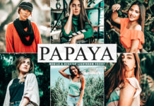 Free Papaya Lightroom Preset