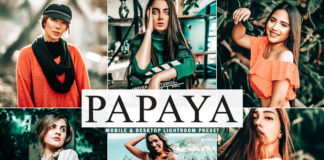 Free Papaya Lightroom Preset