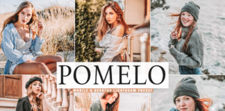Free Pomelo Lightroom Preset