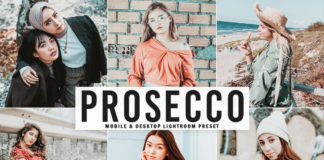Free Prosecco Lightroom Preset