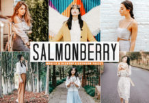 Free Salmonberry Lightroom Preset