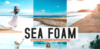 Free Sea Foam Lightroom Preset