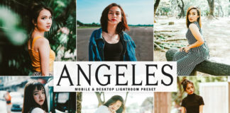 Free Angeles Lightroom Preset