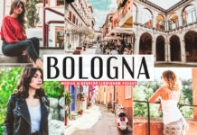 Free Bologna Lightroom Preset