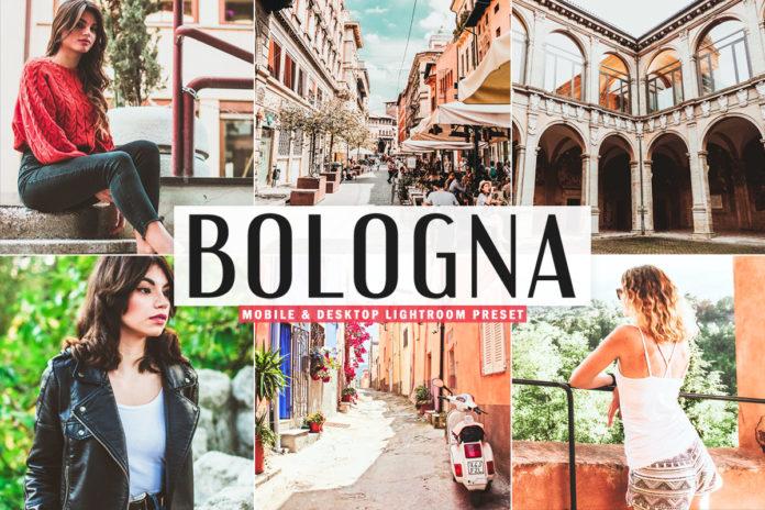 Free Bologna Lightroom Preset