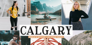 Free Calgary Lightroom Preset