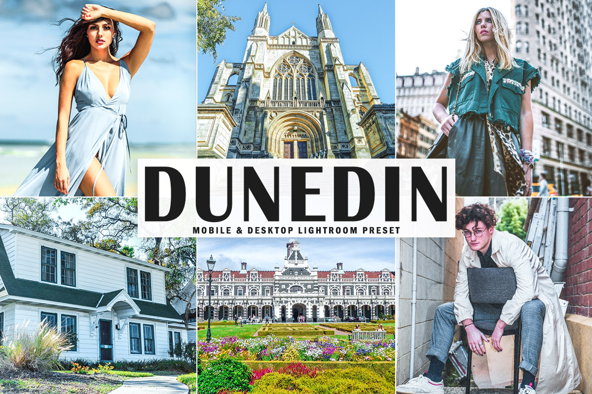 Free Dunedin Lightroom Preset