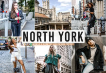 Free North York Lightroom Preset