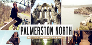 Free Palmerston North Lightroom Preset