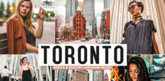 Free Toronto Lightroom Preset