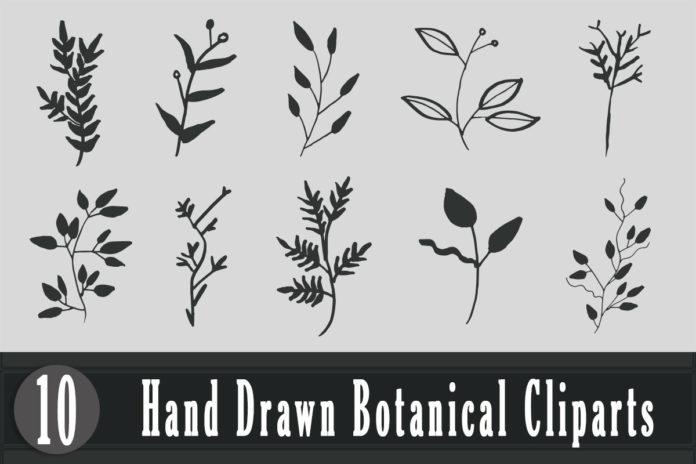 Free Handmade Botanical Cliparts