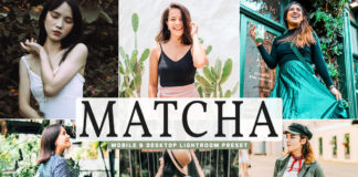 Free Matcha Lightroom Preset